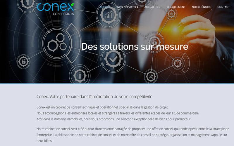 Conex consultant