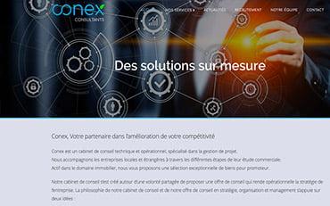 Conex Consultants